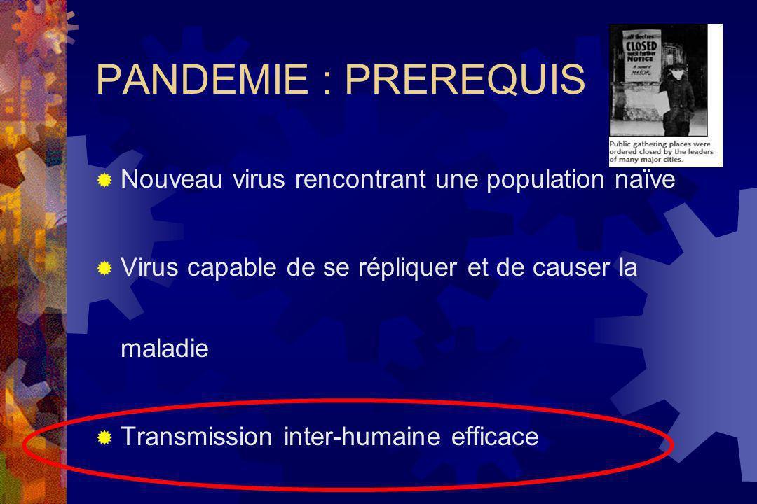 Pandémies grippales Les pandémies ont lieu tous les 10 à 40 ans Jusquà 50 % de la population mondiale peut être affectée Virus nouveau pour la population humaine Taux de létalité élevé 1997 grippe du poulet à Hong Kong – rappel de la menace pandémique (H5N1) 18 cas, 6 décès mars 2003 : Pays-Bas 84 cas H7N7, 1 décès Mortalité au cours des pandémies du 20 e siècle 1, 2 1918-19 1957-58 1968-69 « Grippe espagnole » A(H1N1) « Grippe asiatique » A(H2N2) « Grippe de Hong-Kong » A(H3N2) 30 millions de décès dans le monde 1 million de décès dans le monde 0,8 millions de décès dans le monde