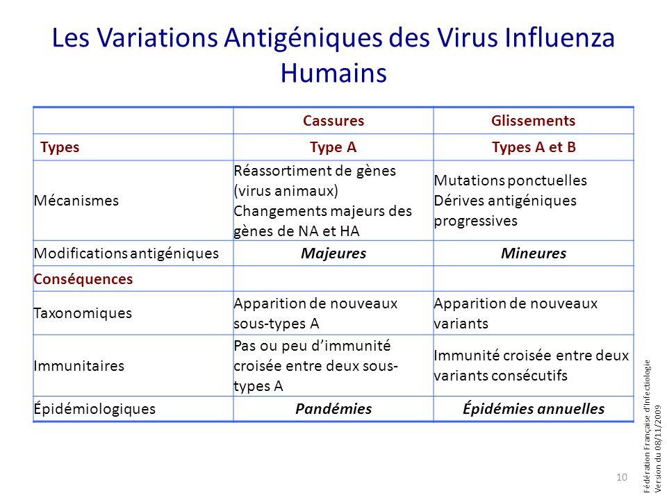 Fédération Française dInfectiologie Version du 08/11/2009 Les Variations Antigéniques des Virus Influenza Humains CassuresGlissements TypesType ATypes