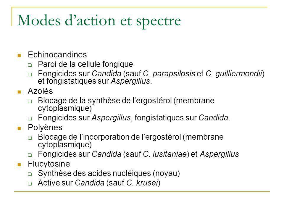 Modes daction et spectre Echinocandines Paroi de la cellule fongique Fongicides sur Candida (sauf C. parapsilosis et C. guilliermondii) et fongistatiq