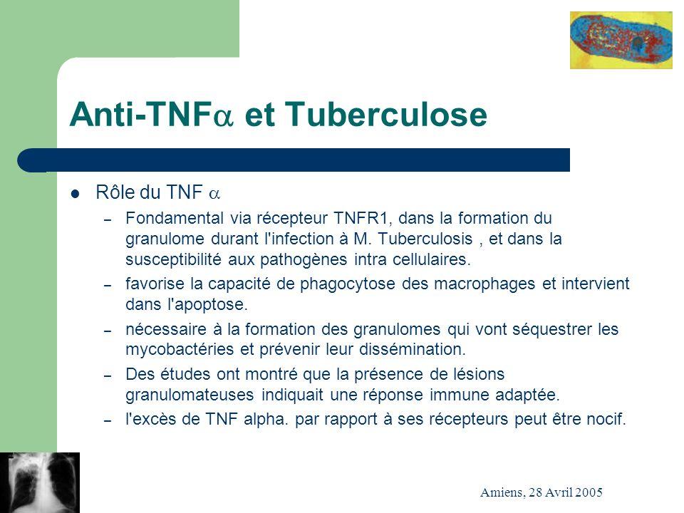 Amiens, 28 Avril 2005 Anti-TNF et Tuberculose Rôle du TNF – Fondamental via récepteur TNFR1, dans la formation du granulome durant l'infection à M. Tu