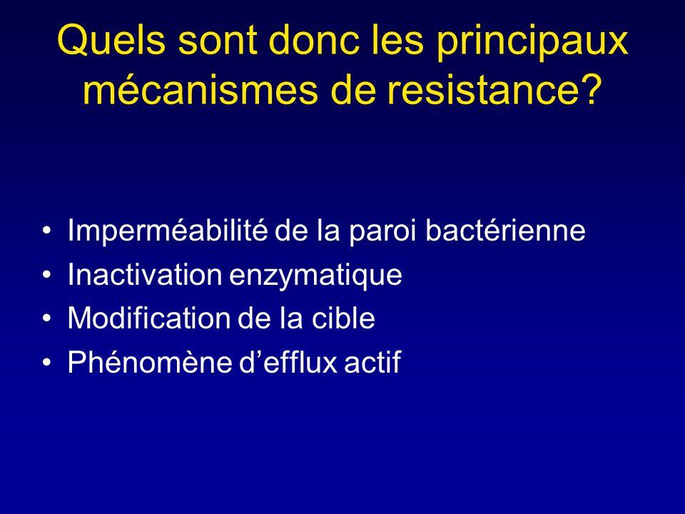 Pourquoi les béta-lactamines ont un spectre différent puisquelles agissent sur le même site? Parce que les bactéries ont des PLPs différents Parce que