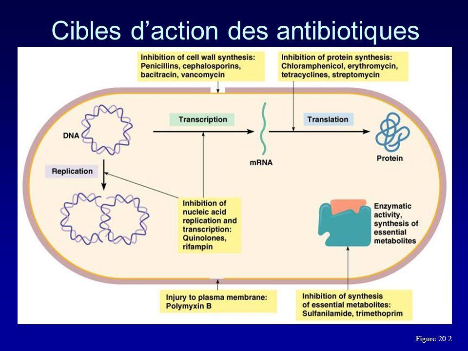 Quels sont donc les principaux mécanismes de resistance? Imperméabilité de la paroi bactérienne Inactivation enzymatique Modification de la cible Phén