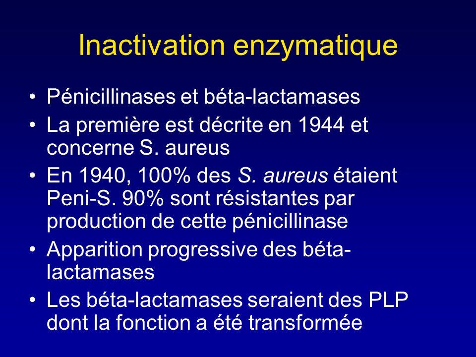 Imperméabilité de la paroi (2) Aucune bétalactamine na de poids moléculaire inférieur à la limite dexclusion des porines... mais, 3 facteurs intervien