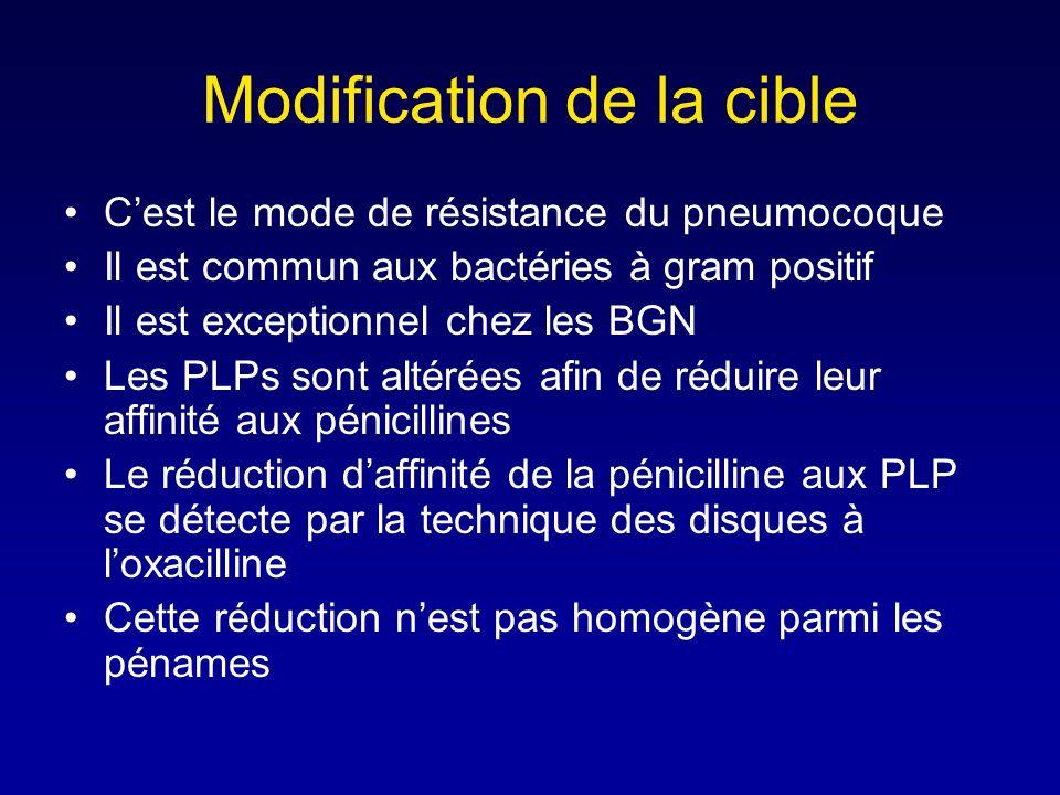 Principe daction de la pénicillinase