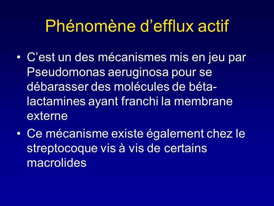 Modification de la cible Cest le mode de résistance du pneumocoque Il est commun aux bactéries à gram positif Il est exceptionnel chez les BGN Les PLP
