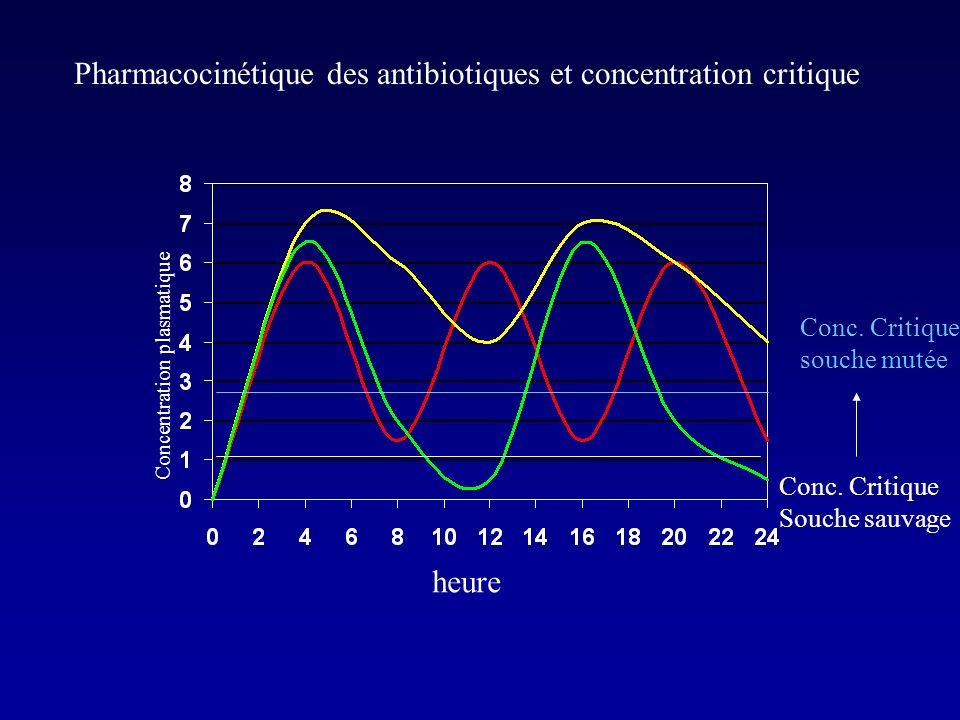 Puisque ce sont des antibiotiques temps-dépendant, pourquoi suffit il daugmenter les doses pour vaincre une résistance?