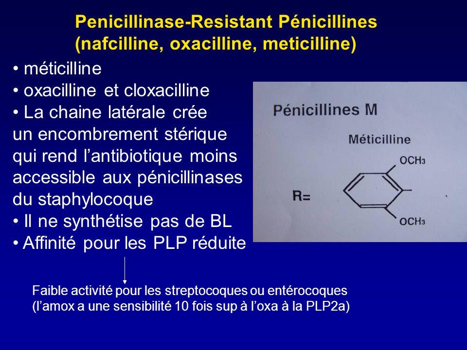 Indications (4) Prévention des rechutes dérysipèle: Extencilline 2,4MUI toutes les 3 à 4 semaines 6 à 12 mois (uniquement en cas dérysipèle récidivant