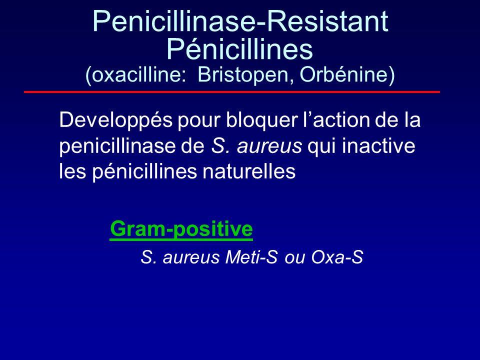 méticilline oxacilline et cloxacilline La chaine latérale crée un encombrement stérique qui rend lantibiotique moins accessible aux pénicillinases du