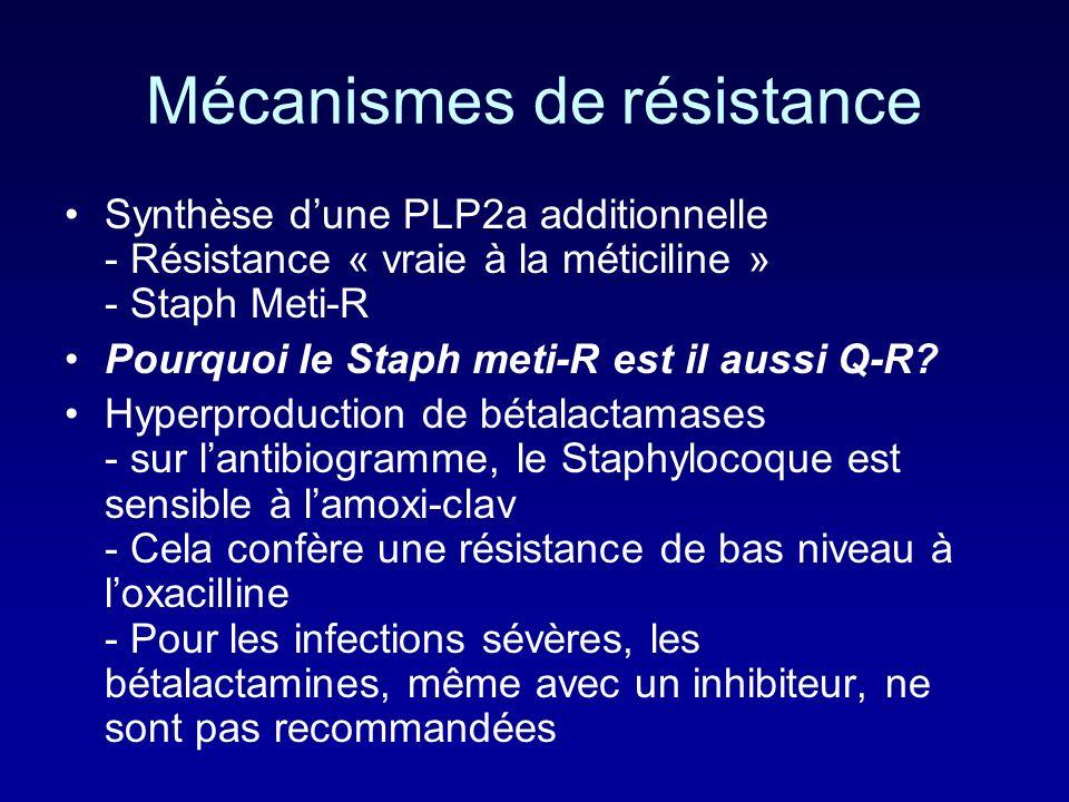 Penicillinase-Resistant Pénicillines (oxacilline: Bristopen, Orbénine) Developpés pour bloquer laction de la penicillinase de S. aureus qui inactive l
