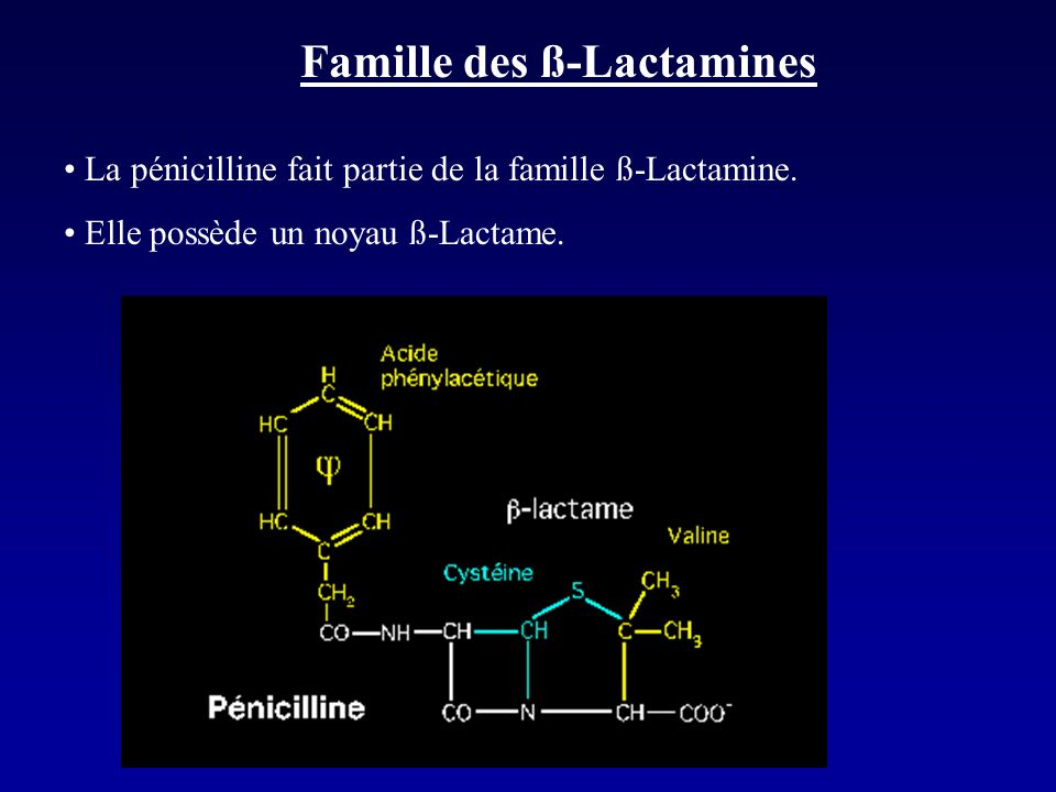 Pharmacocinétique PéniG: - détruite par lacidité gastrique - VD= 0,35L/kg - faible diffusion dans le LCR (5 à 10% des concentrations sériques) - la demie-vie étant courte (30mn): nécessité de faire 4 perfusions/24h ou en perfusion continue PeniV: - Stable en milieu acide - pic en 30-60mn - élimination rénale identique à PeniG - intervalle entre les prises: 8h Penicillines retard: - 21 jours après une injection IM de 2,4MUI, les taux sériques sont de 0,12µg/ml