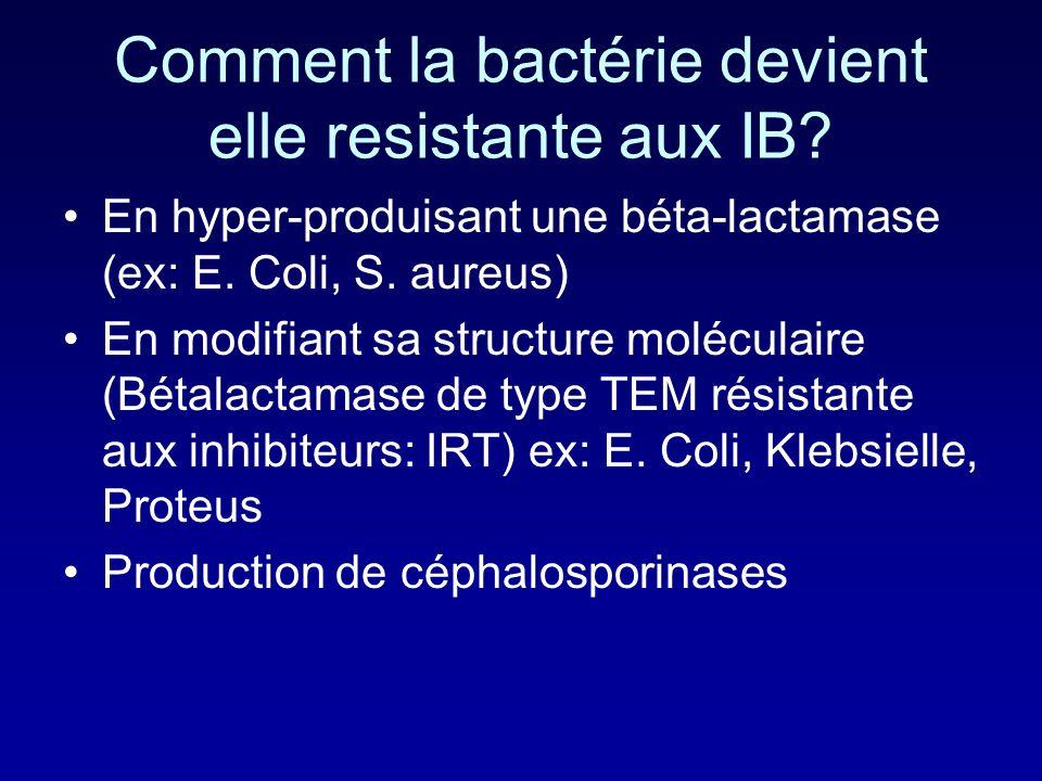 Quelles sont les bétalactamases qui intéressent les pénicillines? TEM1 et TEM2 (E. Coli, Proteus) SHV-1 (Klebsielle) Pénicillinase plasmidique: Haemop