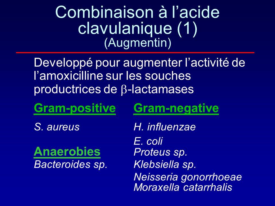 Comment la bactérie devient elle resistante aux IB? En hyper-produisant une béta-lactamase (ex: E. Coli, S. aureus) En modifiant sa structure molécula