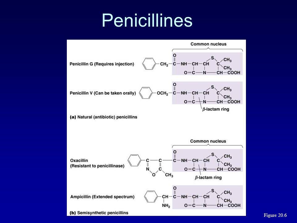Combinaison à lacide clavulanique (1) (Augmentin) Developpé pour augmenter lactivité de lamoxicilline sur les souches productrices de -lactamases Gram-positiveGram-negative S.