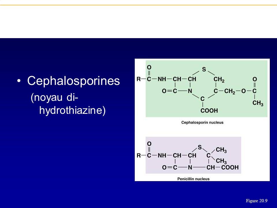 Cephalosporines (noyau di- hydrothiazine) Figure 20.9