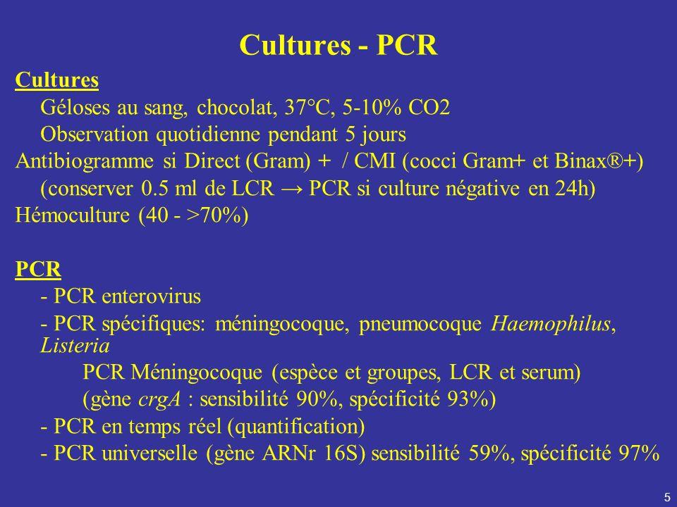 5 Cultures - PCR Cultures Géloses au sang, chocolat, 37°C, 5-10% CO2 Observation quotidienne pendant 5 jours Antibiogramme si Direct (Gram) + / CMI (c