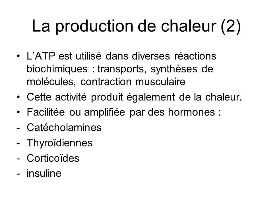La production de chaleur (2) LATP est utilisé dans diverses réactions biochimiques : transports, synthèses de molécules, contraction musculaire Cette