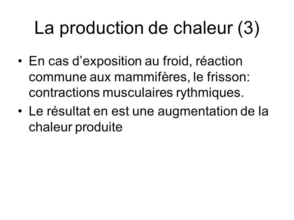 La production de chaleur (3) En cas dexposition au froid, réaction commune aux mammifères, le frisson: contractions musculaires rythmiques. Le résulta