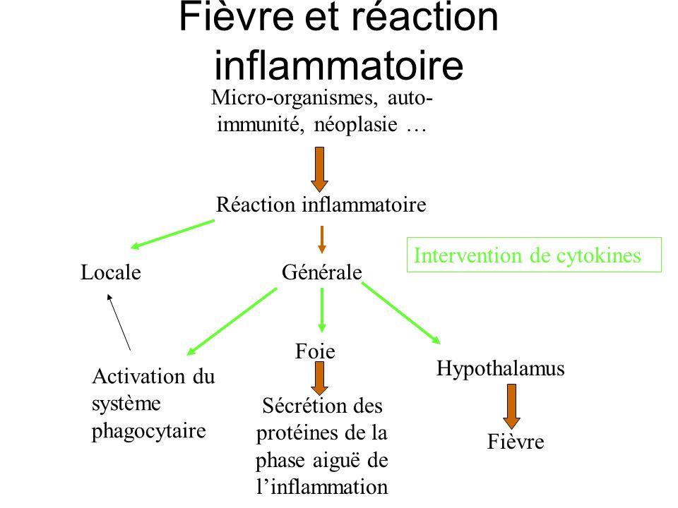 Fièvre et réaction inflammatoire Micro-organismes, auto- immunité, néoplasie … Réaction inflammatoire LocaleGénérale Fièvre Sécrétion des protéines de
