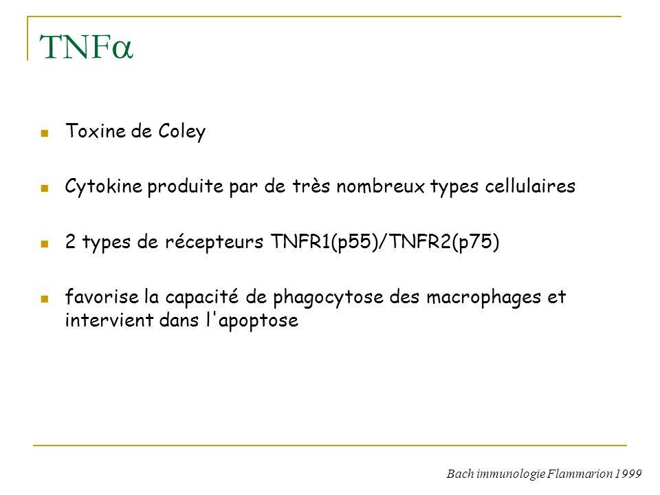 TNF Toxine de Coley Cytokine produite par de très nombreux types cellulaires 2 types de récepteurs TNFR1(p55)/TNFR2(p75) favorise la capacité de phagocytose des macrophages et intervient dans l apoptose Bach immunologie Flammarion 1999