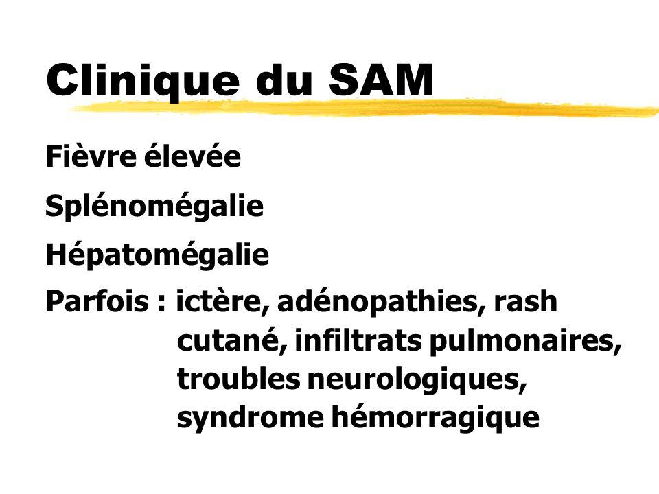 Clinique du SAM Fièvre élevée Splénomégalie Hépatomégalie Parfois : ictère, adénopathies, rash cutané, infiltrats pulmonaires, troubles neurologiques, syndrome hémorragique