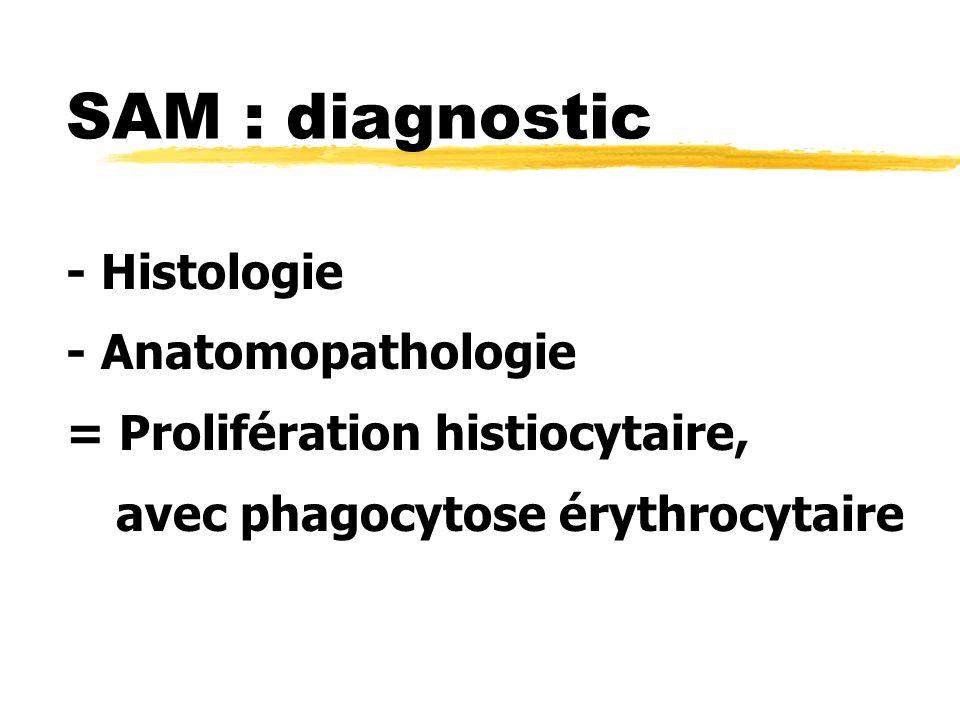 SAM : diagnostic - Histologie - Anatomopathologie = Prolifération histiocytaire, avec phagocytose érythrocytaire