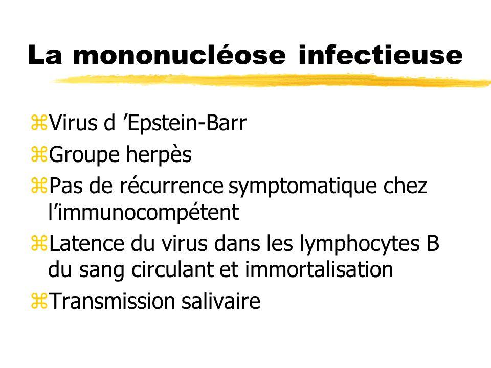 La mononucléose infectieuse zVirus d Epstein-Barr zGroupe herpès zPas de récurrence symptomatique chez limmunocompétent zLatence du virus dans les lymphocytes B du sang circulant et immortalisation zTransmission salivaire