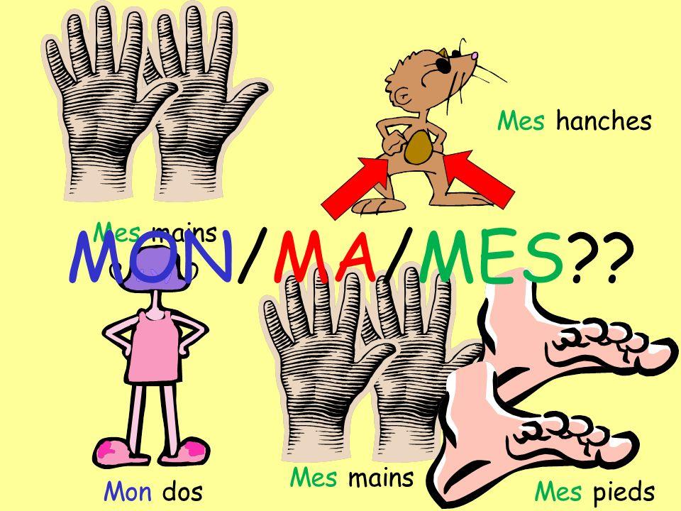 Mes mains Mes hanches Mon dos Mes mains Mes pieds MON/MA/MES