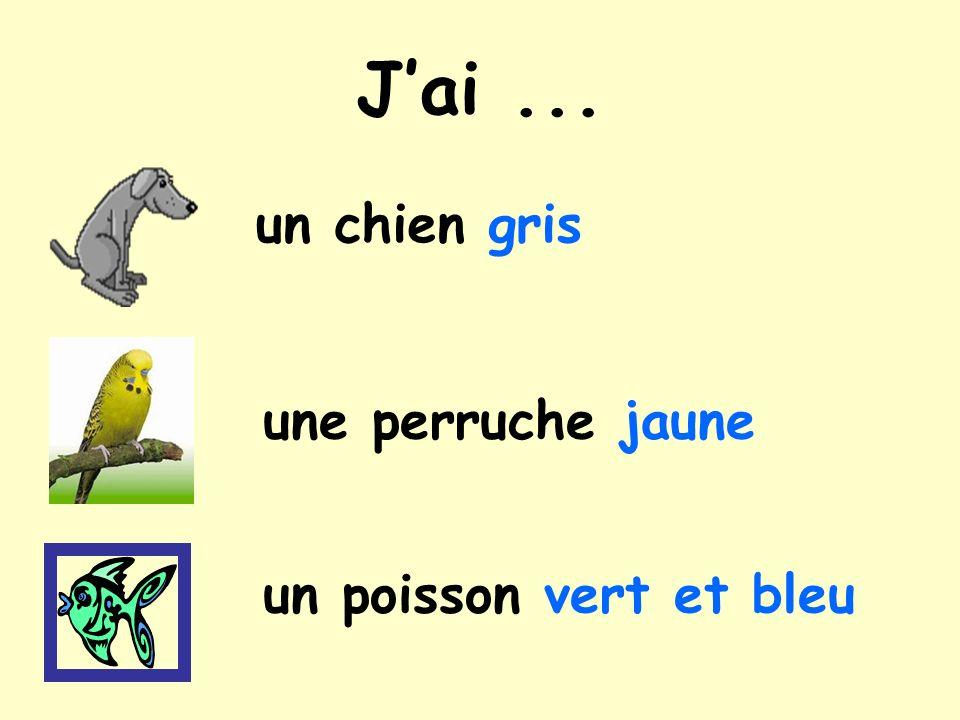un serpent vert un oiseau jaune un cheval marron Jai...