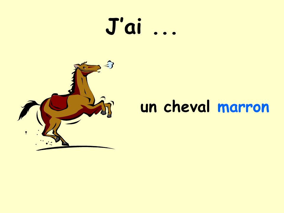 Jai... un cheval marron