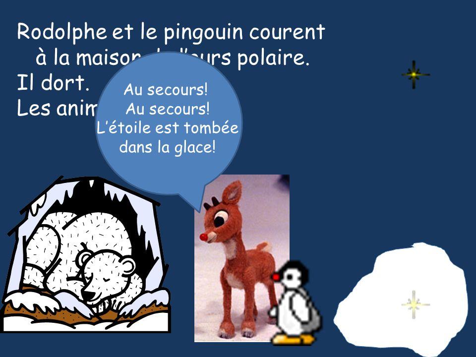 Rodolphe et le pingouin courent à la maison de lours polaire. Il dort. Les animaux crient. Au secours! Létoile est tombée dans la glace!