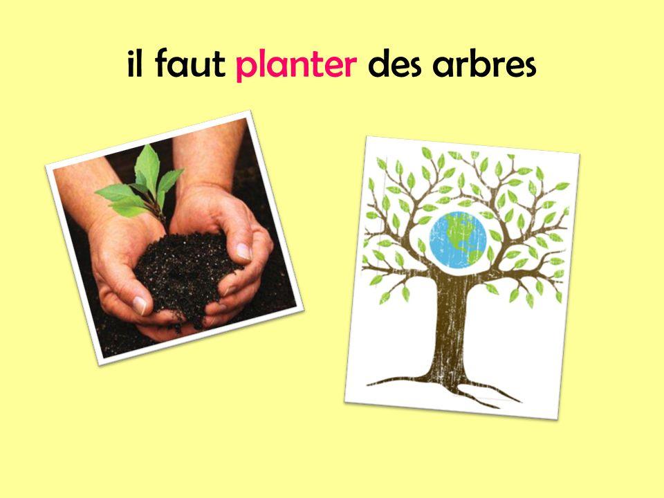 il faut planter des arbres