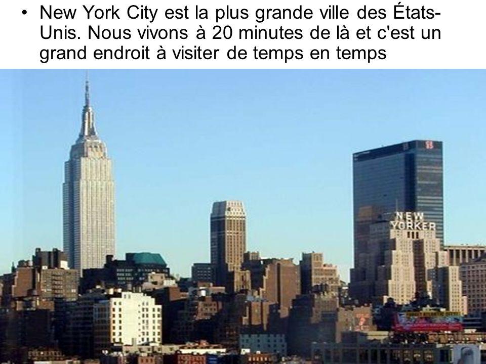 New York City est la plus grande ville des États- Unis. Nous vivons à 20 minutes de là et c'est un grand endroit à visiter de temps en temps
