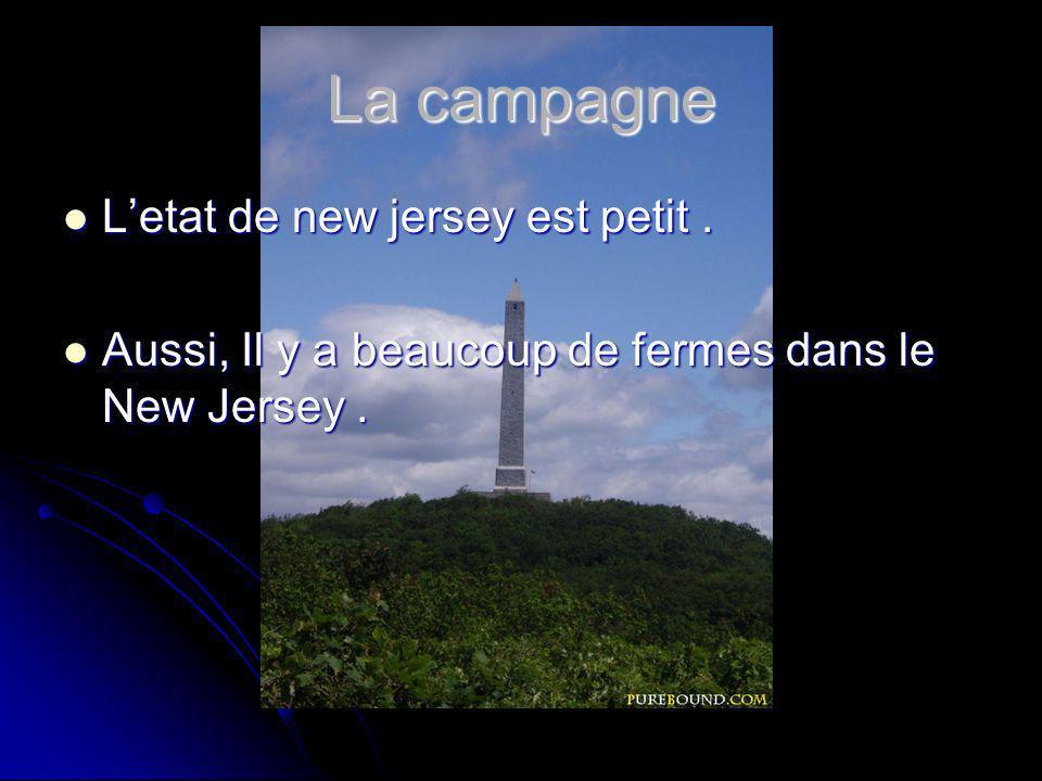 La campagne Letat de new jersey est petit. Letat de new jersey est petit.
