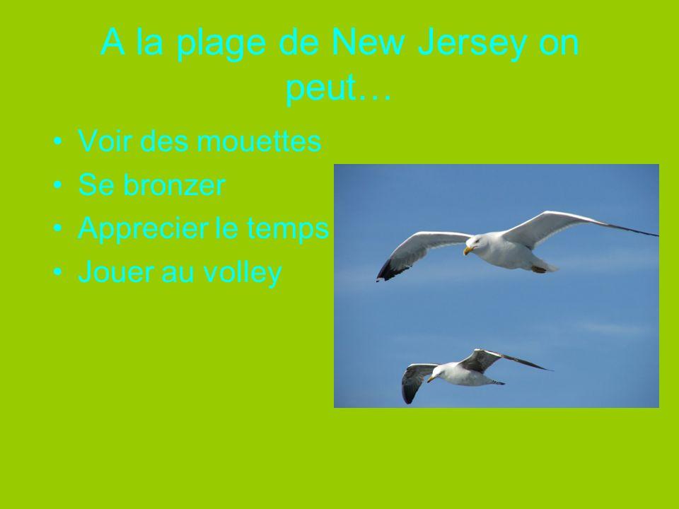 A la plage de New Jersey on peut… Voir des mouettes Se bronzer Apprecier le temps Jouer au volley
