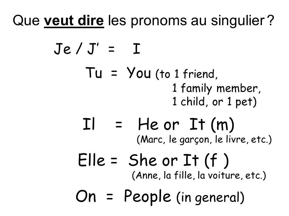 Que veut dire les pronoms au singulier .