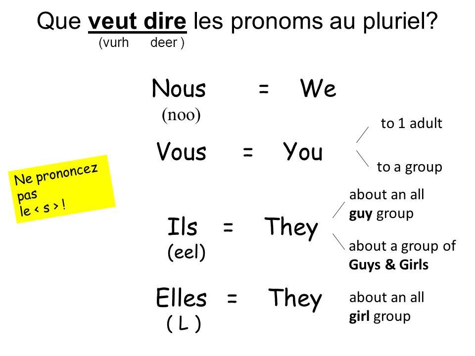 Que veut dire les pronoms au pluriel.