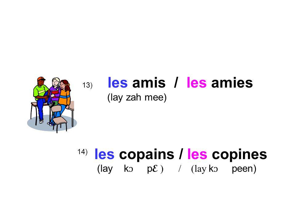 13) les amis / les amies (lay zah mee) les copains / les copines (lay k ɔ p E ) / (lay k ɔ peen) 14)