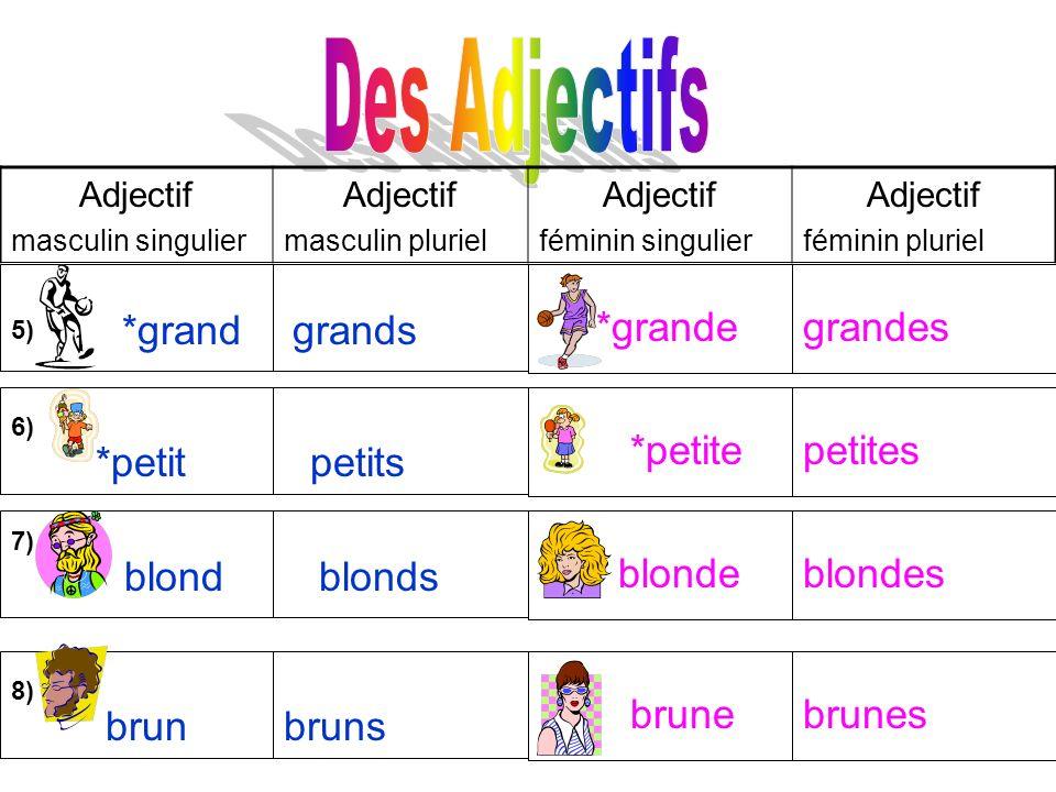 Adjectif masculin singulier Adjectif masculin pluriel Adjectif féminin singulier Adjectif féminin pluriel *grand grandes grands *grande *petite blonde