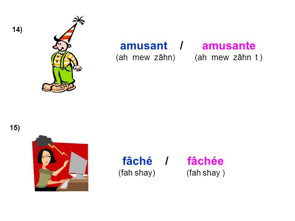 14) amusant / amusante (ah mew zãhn) (ah mew zãhn t ) 15) fâché / fâchée (fah shay) (fah shay )