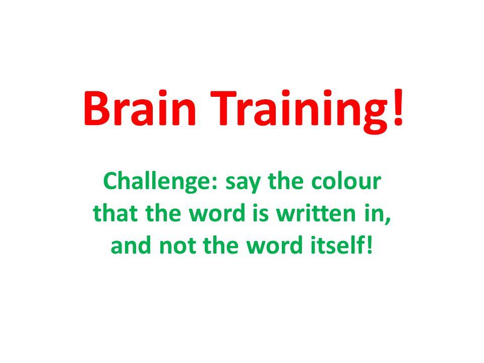 Brain Training – Les Couleurs
