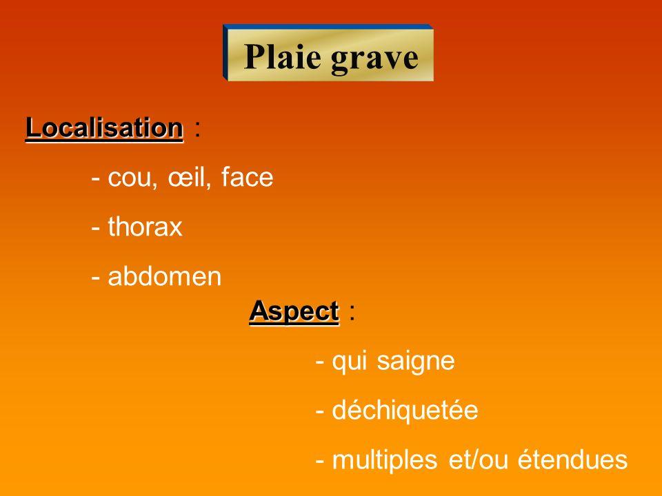 Plaie grave Localisation Localisation : - cou, œil, face - thorax - abdomen Aspect Aspect : - qui saigne - déchiquetée - multiples et/ou étendues
