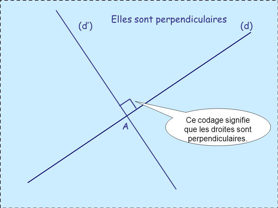A Elles sont perpendiculaires Ce codage signifie que les droites sont perpendiculaires.