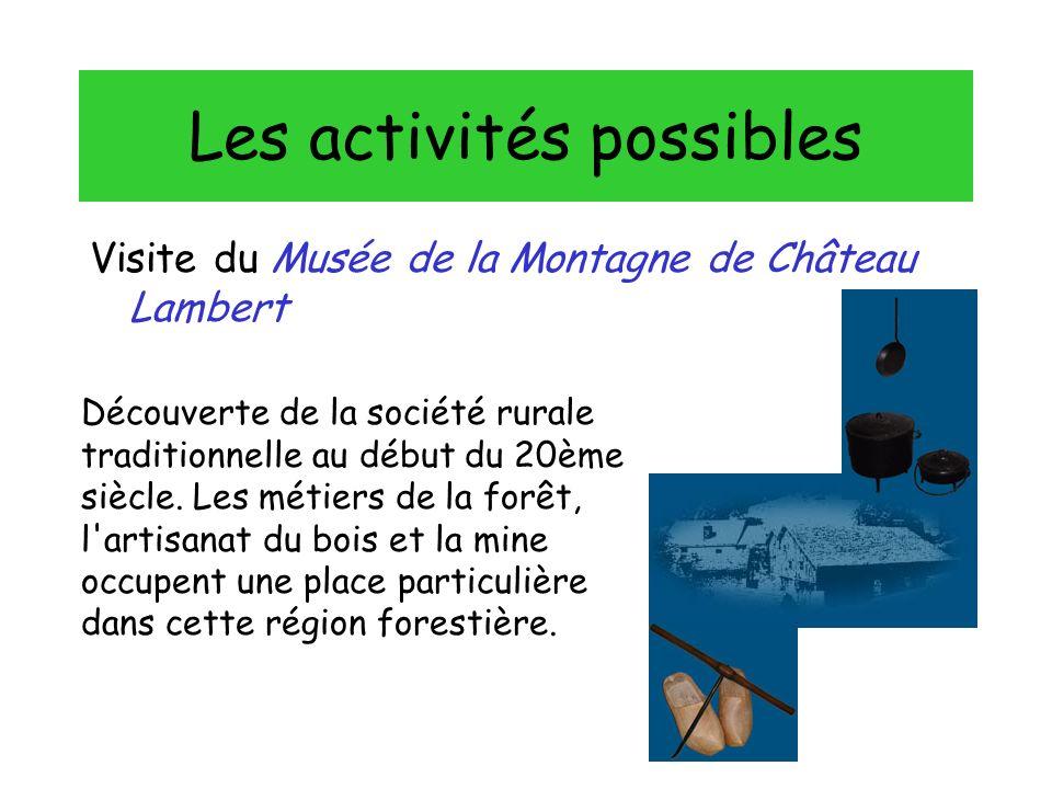 Les activités possibles Visite du Musée de la Montagne de Château Lambert Découverte de la société rurale traditionnelle au début du 20ème siècle.