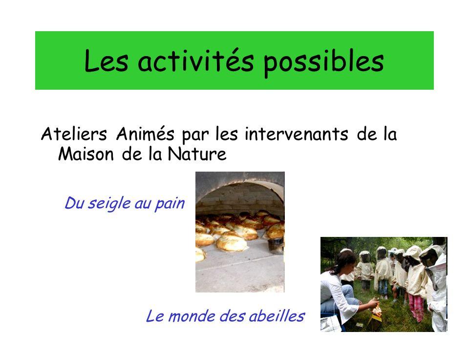 Ateliers Animés par les intervenants de la Maison de la Nature Les activités possibles Du seigle au pain Le monde des abeilles
