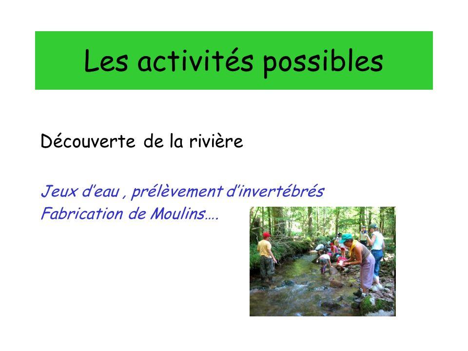 Les activités possibles Découverte de la rivière Jeux deau, prélèvement dinvertébrés Fabrication de Moulins….