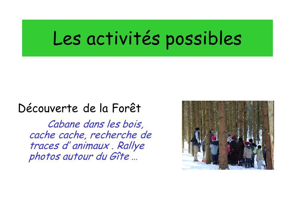 Les activités possibles Découverte de la Forêt Cabane dans les bois, cache cache, recherche de traces d animaux.