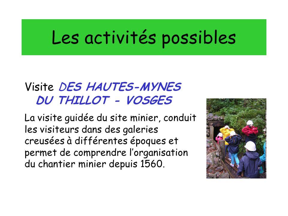 Les activités possibles Visite DES HAUTES-MYNES DU THILLOT - VOSGES La visite guidée du site minier, conduit les visiteurs dans des galeries creusées à différentes époques et permet de comprendre lorganisation du chantier minier depuis 1560.