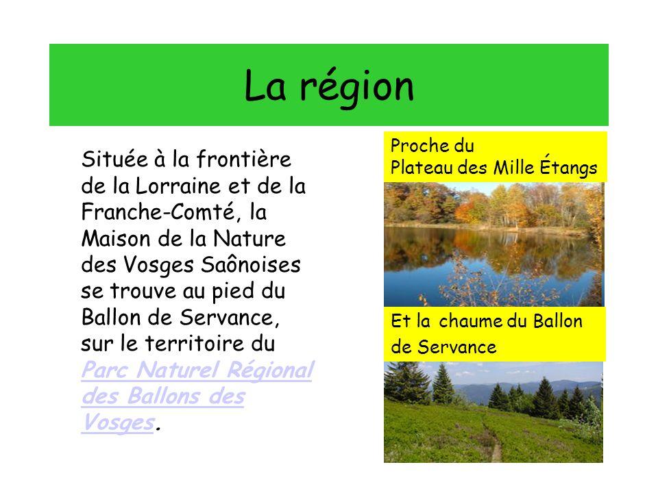 La région Située à la frontière de la Lorraine et de la Franche-Comté, la Maison de la Nature des Vosges Saônoises se trouve au pied du Ballon de Servance, sur le territoire du Parc Naturel Régional des Ballons des Vosges.