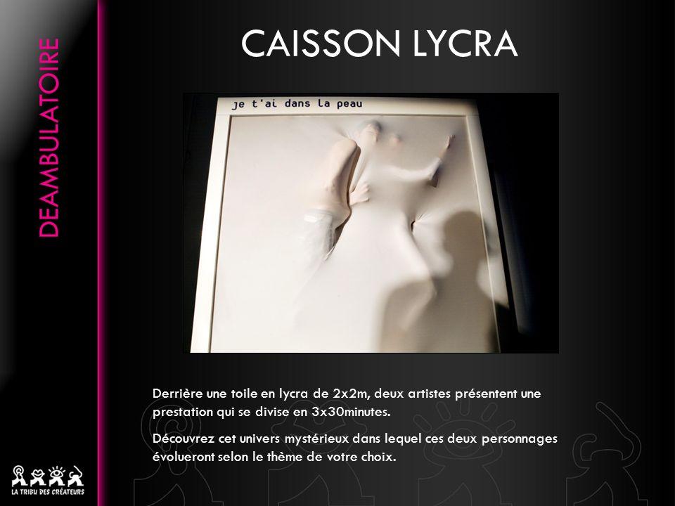 CAISSON LYCRA Derrière une toile en lycra de 2x2m, deux artistes présentent une prestation qui se divise en 3x30minutes. Découvrez cet univers mystéri