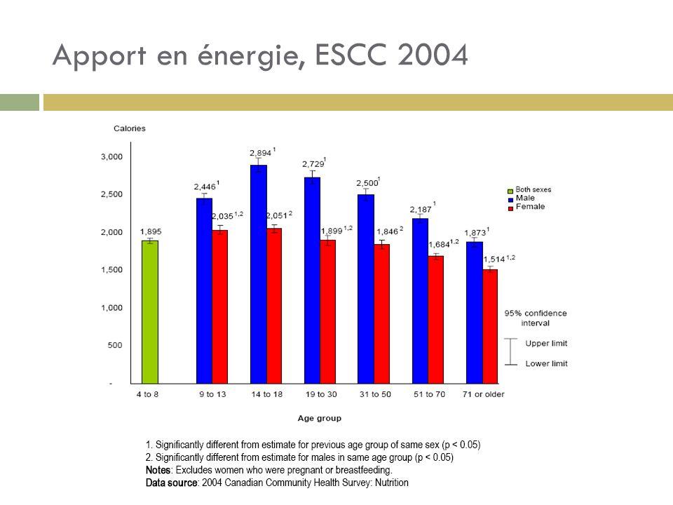 Apport en énergie, ESCC 2004